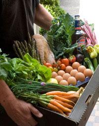 fresh seasonal produce